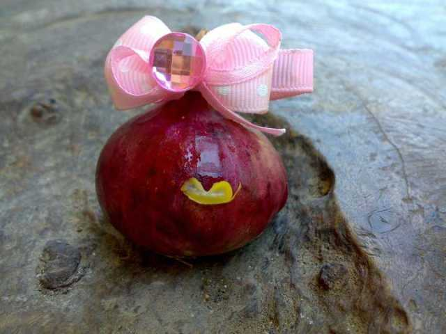 Miss Naught Onion Make-over!